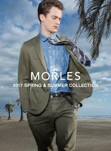 MORLES2017ss